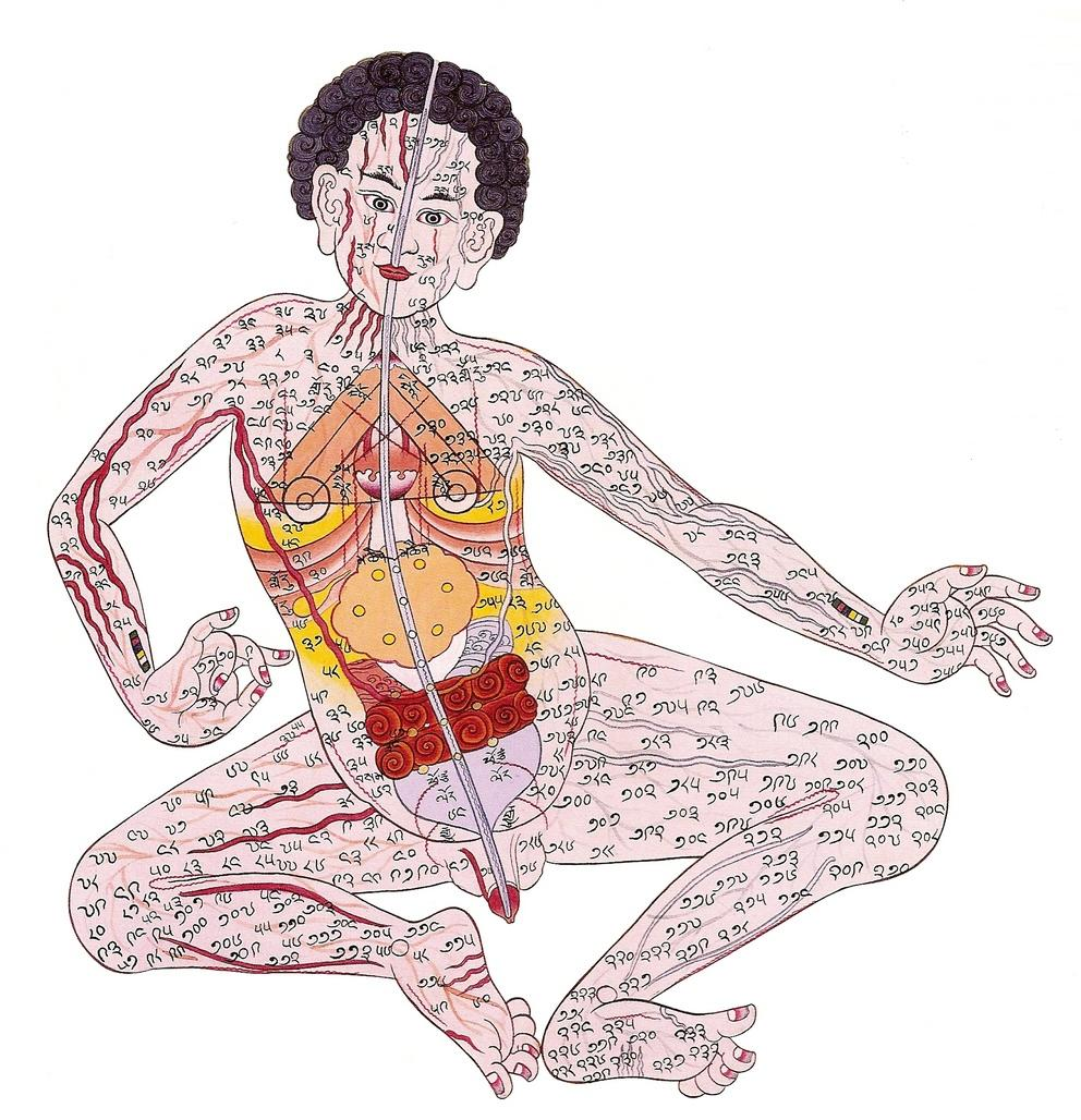 MU Difusion 14 Norbuling abril 2017 Medicina tibetana medicina-tibetana-3